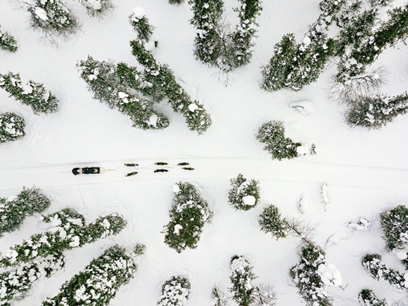 Picture of Lapland Trail
